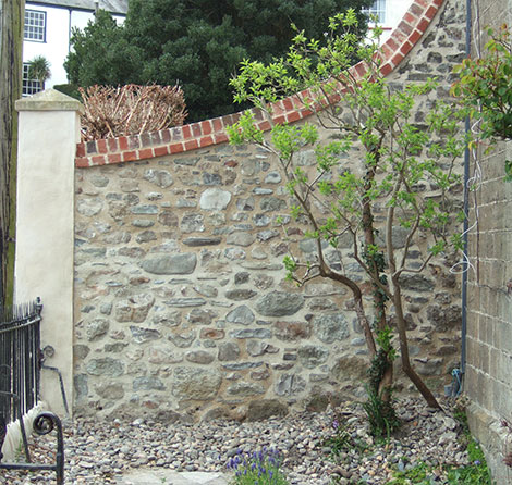Wall after repointing